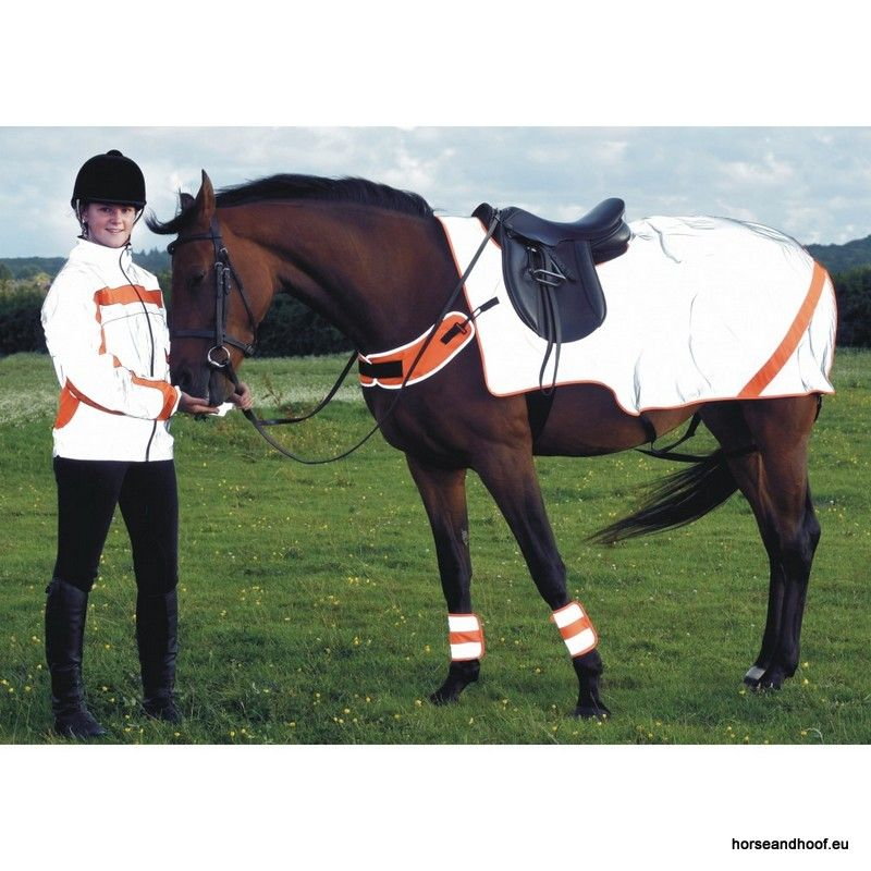 Equisafety High Visibility Waterproof Reflective Mercury