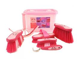 Bentley Brushware Pink Slip-Not Grooming Kit