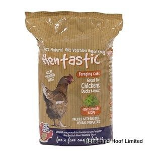 Hentastic Feast Cake Mint & Parsley Poultry Treats 8 x 350g