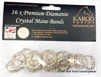 Mane Plaiting Bands Diamante Crystal