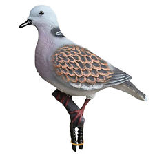 Sport Plast Turtle Dove decoy